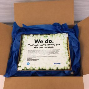 HP Care Packs Direct Mail